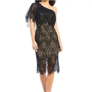 Dress the Population One Shoulder Nude Lace Dress